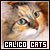 Cats: Calico: