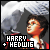 Harry Potter: Hedwig and Harry Potter: